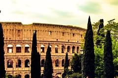 Il Colosseo di giorno, al chiaro di luna, a lume di torcia e con ogni sorta di luce è quanto di più stupendo e terribile. (Nabel Grant) Tags: gladiatori roma travelphotography street monument 55mm