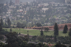 mountian view development (pbo31) Tags: bayarea california nikon d810 color may 2019 boury pbo31 spring eastbay alamedacounty oakland over claremont hills mom joyce grave mountianview cemetary green construction