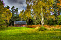 near Fochabers 30 October 2013-0002.jpg (JamesPDeans.co.uk) Tags: autumn hut outbuildings moray plants woods greatbritain trees scotland britain season architecture unitedkingdom gb europe uk nature fochabers