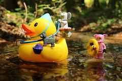 The rubber duck ride. #Lego #CenasLego #LegoScenes #duck #rubberduck #minifigures #river #water #nature #wild #legography #legomacro #canon #happydays (LegoScenes) Tags: lego cenaslego legoscenes duck rubberduck minifigures river water nature wild legography legomacro canon happydays