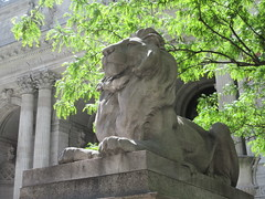 2019 Lion Under Shady Branches New York Public Library 8761 (Brechtbug) Tags: 2019 lions new york public library statues lion hanging shadows 42nd street 5th avenue nyc 05182019 may springtime soon spring weather eventually animal cat feline statue sculpture art cats ave st gargoyles gargoyle reclining repose resting facade stairs front entrance
