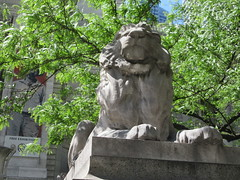2019 Lion Under Shady Branches New York Public Library 8759 (Brechtbug) Tags: 2019 lions new york public library statues lion hanging shadows 42nd street 5th avenue nyc 05182019 may springtime soon spring weather eventually animal cat feline statue sculpture art cats ave st gargoyles gargoyle reclining repose resting facade stairs front entrance