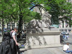 2019 Lion Under Shady Branches New York Public Library 8747 (Brechtbug) Tags: 2019 lions new york public library statues lion hanging shadows 42nd street 5th avenue nyc 05182019 may springtime soon spring weather eventually animal cat feline statue sculpture art cats ave st gargoyles gargoyle reclining repose resting facade stairs front entrance