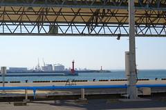 Fishing and industrial ports (しまむー) Tags: fujifilm xe2 ebc fujinon 55mm f18 velvia yokohama kabushima 横浜 蕪島 八戸 蕪島神社 菜の花