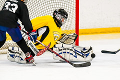 DSC_7818.jpg (Flickr 4 Paul) Tags: chillereaston hornets pondhockey