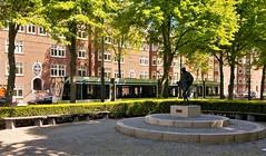 Langs de Lijn: Langs Gandhi. (Peter ( phonepics only) Eijkman) Tags: amsterdam city combino gvb tram transport trams tramtracks trolley rail rails strassenbahn streetcars nederland netherlands nederlandse noordholland holland