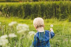 Henri (noxsuperman) Tags: pusteblume dandelion kid outside green summer