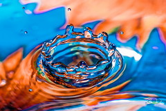Splash! #1 (Simone_Callegari) Tags: water waterdrops drop drops macro macrophotography nikon d850 105 105mm nikkor colors colori colores color acqua gocce goccia