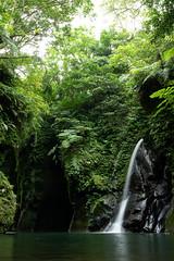 _DSC0037 (Y.S. Lien) Tags: waterplaying rivertracing valley nature thewormhole shiding newtaipei taiwan 戲水 溯溪 溪谷 自然 蚯蚓坑 石碇 新北 台灣