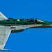 RAAF 77SQN Special Bird
