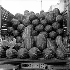Marrakech 2019, 003 (haribote) Tags: planar tmax carlzeiss hasselblad cityscape 400tmy 503cw cf80mmf28 kodak マラケシュ マラケシュ=タンシフ モロッコ