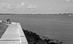 Sitting on a Seawall (PositiveAboutNegatives) Tags: leica slr leicaflexsl leitz leicar 50mm 50mmsummicron yellowfilter film bw blackandwhitefilm kodak tmax tmax100 adox fx39 coolscan lantana florida