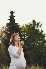 Annette (noxsuperman) Tags: fotografie fotoshooting babybauch baby pregnancy pregnant pretty bokeh outside family pusteblume dandelion