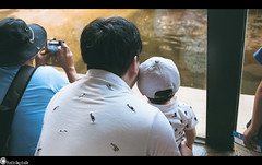 20190519-DSC_5311.jpg (plasticboystudio_PhotoJUNKY) Tags: ポートレイト 家族 hokkaido relax life japanesewomen zoo japanese 赤ちゃん 子供 北海道