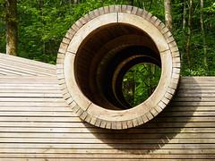 Alice Holt Sculptures-F5180247 (tony.rummery) Tags: aliceholt em5mkii forest hampshire mft microfourthirds omd olympus playpark sculpture structure tubes wooden farnham england unitedkingdom