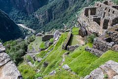 Machu Picchu Peru (Chicago_Tim) Tags: machu picchu peru inka inca city village architecture andes mountains stone citadel aerial above