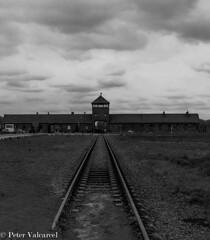 Krakow Poland (Peter Valcarcel) Tags: birkenau holidays holocaust birkenauconcentrationcamp travel photography phototravel krakow auschwitzconcentrationcamp travelphotos holiday poland blackandwhite