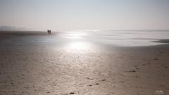 Frozen Morning (Di_Chap) Tags: hiver france beach plage mareebasse vendée saintjeandemonts givre paysdelaloire