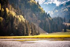 Obersee (WaldyWhite) Tags: se see озеро горы ber schweiz landschaft landscape alpen альпы ландшафт berge wanderung прогулка путешествия тихий уголок