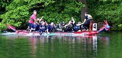 Dragon Boat Race 2019 @ Roundhay Park, (19-05-19) Leeds, England, UK (CT Photography (UK)) Tags: dragonboatrace boatrace roundhaypark leeds england uk event events martinhouse charity charityevents charityevent