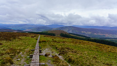 Follow the trail (andrewsc) Tags: sel24105g a7iii djouce sony roundwood countywicklow ireland