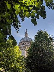 St Paul's through the trees (Spannarama) Tags: stpaulscathedral framed framewithinaframe blueskies sunshine london uk backlit leaves trees glowing
