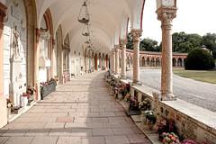 Ferrara-25 (e.berti93) Tags: ferrara architecture architettura art italy brick urban antico monumento castello estense piazza città bike