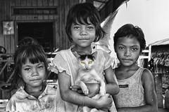 CAMBODIA351 (Glenn Losack, M.D.) Tags: cats animals children cambodia reap siam phnom penh streetphotographer glosack