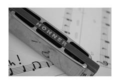 Macro Mondays : relaxation / L'harmonica (PriscillaHernandez85) Tags: musique music macro harmonica partition notes instrument noiretblanc monochrome blackandwhite macromondays musicinbw smileonsaturday