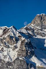 Mond an der Bergkuppe