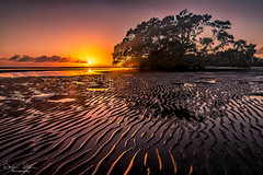 Gold_A_Print_Nudgee Sunrise_420-Flickr.jpg (Brian Dean) Tags: agrade open 20190506judging aspleycameraclub gold 2019bookpending 2019tour brisbane phototravel qld clubgoldprint gold11 awarded nudgee slideshow aspleysubmitted