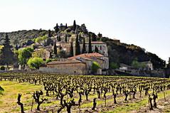 La Roque sur Cèze - Gard - Occitanie (Nathery Reflets) Tags: village lesplusbeauxvillagesdefrance gard occitanie laroquesurcèze villageperché paysage