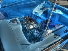 Ford Escort Mk1_Twin Cam_Hales Street_Coventry_Apr19 (Ian Halsey) Tags: fordescortmk1 fordtwincam enginebay twincam underthehood underthebonnet flickr:user=ianhalsey copyright:owner=ianhalsey location:coventry=halesstreet exif:model=panasonictz90
