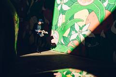 Botanic (DANG3Rphotos) Tags: nikon d750 nikonista dang3rphotos dang3r creative look vision style creativo imagen photo 2017 shot camera inspiration ver like this photos foto fotografia love art artist life light lights shadows valencia street streetphoto