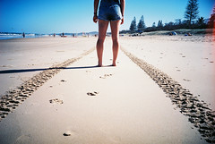 Stay true (spannerino) Tags: australia beach colour film filmlives lomo lomolca lomography outdoor ocean person vintagecamera 35mm 35mmfilm vignette