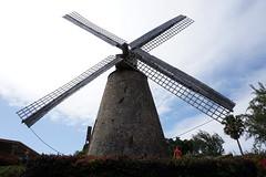 against the sky (thomas.erskine) Tags: 20190301dsc02663teelev 2019 mar barbados windmill silhouette