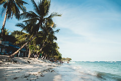 _MG_3825 (waychen_c) Tags: philippines ph visayas centralvisayas bohol provinceofbohol panglao municipalityofpanglao panglaoisland alonabeach boholsea sea beach coast coastline seascape island tree coconuttree cebutour2019 菲律賓 維薩亞斯 維薩亞斯群島 中維薩亞斯 保和 保和省 邦勞 邦勞島 阿羅那海灘 海灘 椰子 南洋 2019宿霧旅行