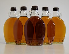 The Fruits of My Labor (jmunt) Tags: maplesyrup maplemadness