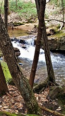 Moose Creek  20190408_134656 (PRS North Star) Tags: streams mountainstreams fishingstreams pristine moosecreek waterfalls