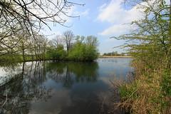 West-Betuwe: blossom time (H. Bos) Tags: asperen linge betuwe westbetuwe lingeroute bloesem blossom voorjaar spring holland typischhollands