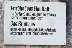 Hallstatt UNESCO World Heritage Austria 哈斯達特 奥地利 欧洲 (c) 2019 Берни Эггерян :: rumoto images 1021 (Берни Эггерян :: rumoto images) Tags: