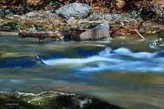 Beard Brook (RayTheriault) Tags: water waterfront nikon nikond810 nature nikon24120 newhampshire hillsboro 50 60 70