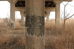 Sape (NJphotograffer) Tags: graffiti graff new jersey nj bridge trackside rail railroad sape4 sape 4 2wcrew 2w crew tfp