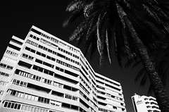 R0610890 (seba0815) Tags: ricohgrii monochrome bw blackandwhite streetphotography city urban minimal minimalism seba0815
