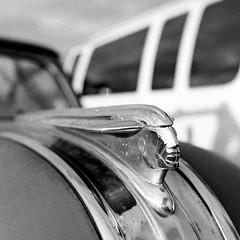 Pontiac Hood Ornament (bac1967) Tags: ilford ilfordhp5 ilfordfilm babyrolleiflex rolleiflex rolleiflextlr rodinal rodinal125 blackandwhite blackandwhitefilm blackwhite bw monochrome monotone 127film 127rollfilm 127 tlr film washington wa washingtonstate pacificnorthwest pnw rusty crusty weathered decay junk junkyard hoodornament bokeh closeup macro chrome