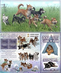 JIAN Silly Shibes II (The Epiphany April '19) ([JIAN]) Tags: secondlife mesh animals shibe shibainu dog dogs puppies puppy pets jian
