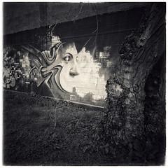La créature du mur (r0llsky) Tags: streetart bw bwphotography creature dilution