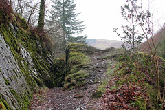 IMG_2017 (Simon M Hendry) Tags: unitedkingdom wales tanycoed forest river waterfall machynlleth corris winter