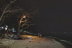 _MG_3208 (waychen_c) Tags: philippines ph visayas centralvisayas bohol provinceofbohol panglaoisland panglao municipalityofpanglao alonabeach coast coastline beach night nightscape tree coconuttree cebutour2019 菲律賓 維薩亞斯 維薩亞斯群島 中維薩亞斯 保和 保和省 邦勞島 邦勞 阿羅那海灘 椰子 椰子樹 海灘 2019宿霧旅行 南洋