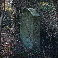 (claudine6677) Tags: friedhof grabstein grab alt verfallen graveyard tombstone gravestone old decay